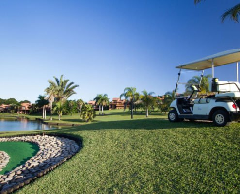 Sanlameer-Resort-Hotel-and-Spa-Golf-Gallery-Greens-Car