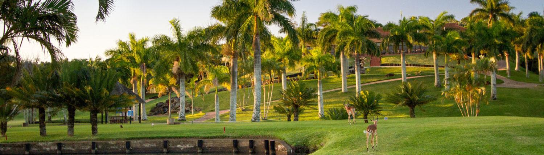 Sanlameer-Resort-Hotel-and-Spa-Golf-Gallery-Greens-Impala